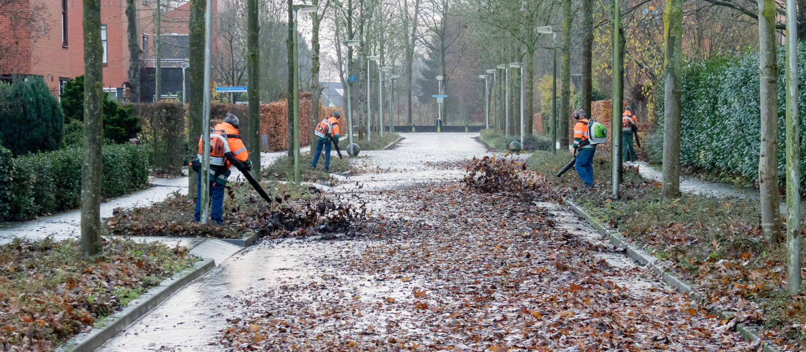 Deventer wordt bladschoon