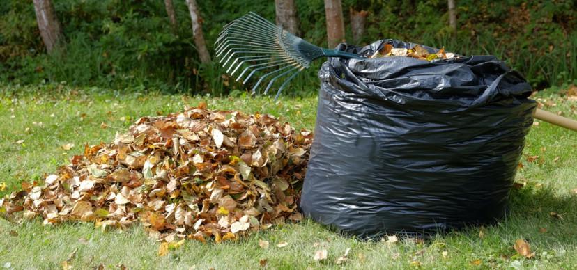 Zelf doen: bladcompost maken