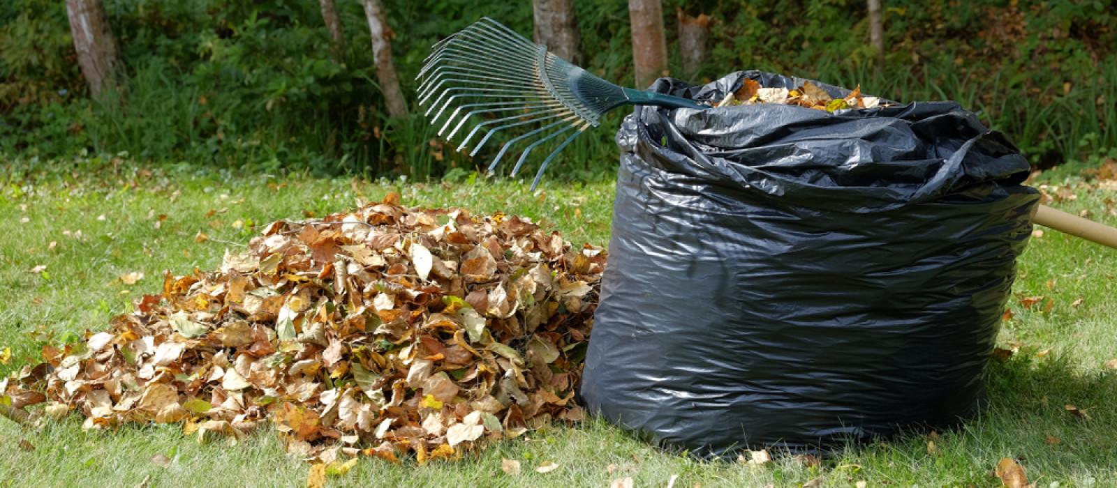 Zelf doen: bladcompost maken!